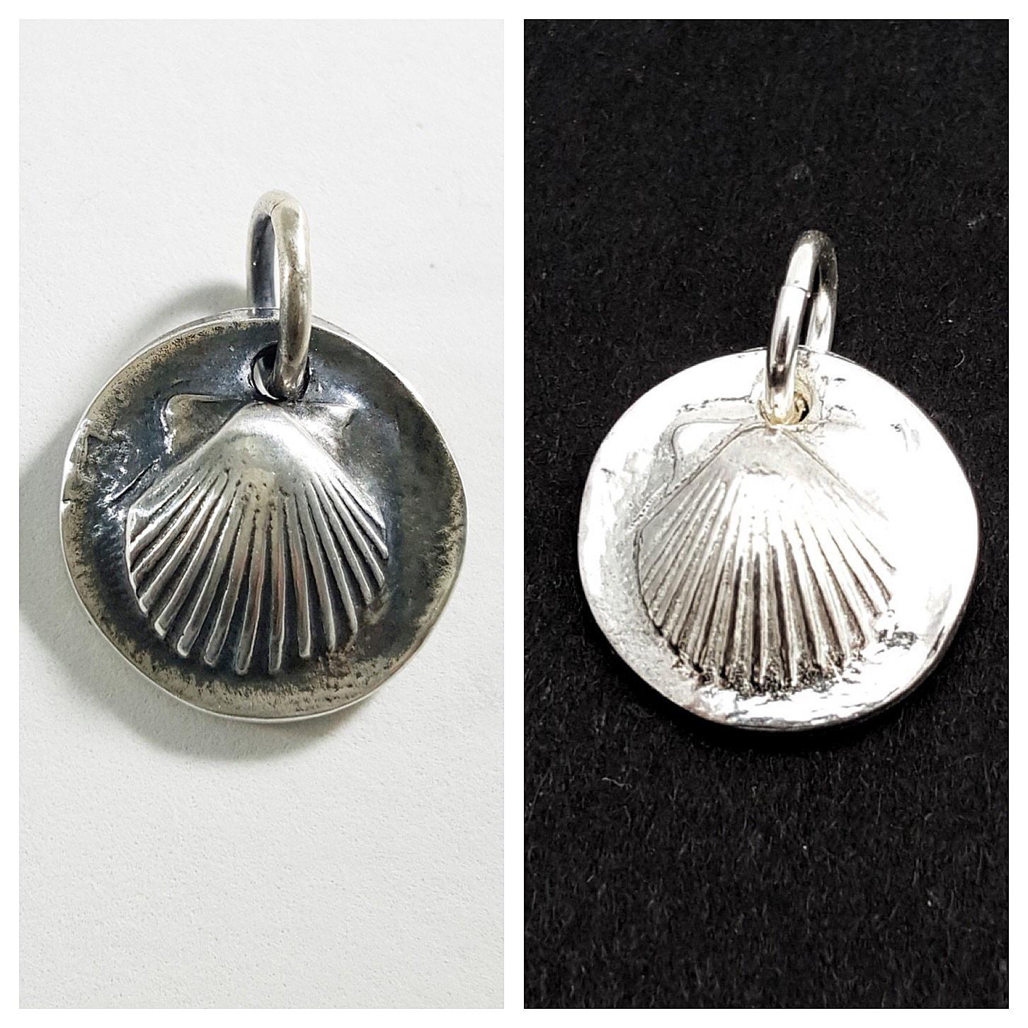 scallop-shell